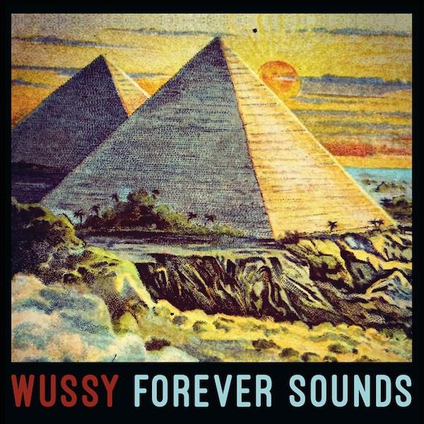 WussyAlbumArt_lores