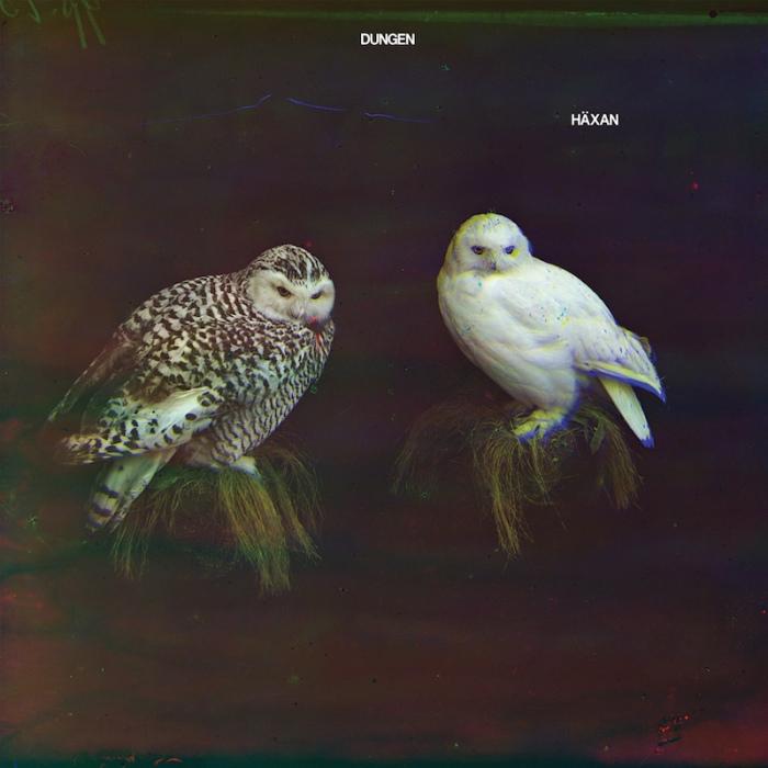 dungen-haxan_web-1
